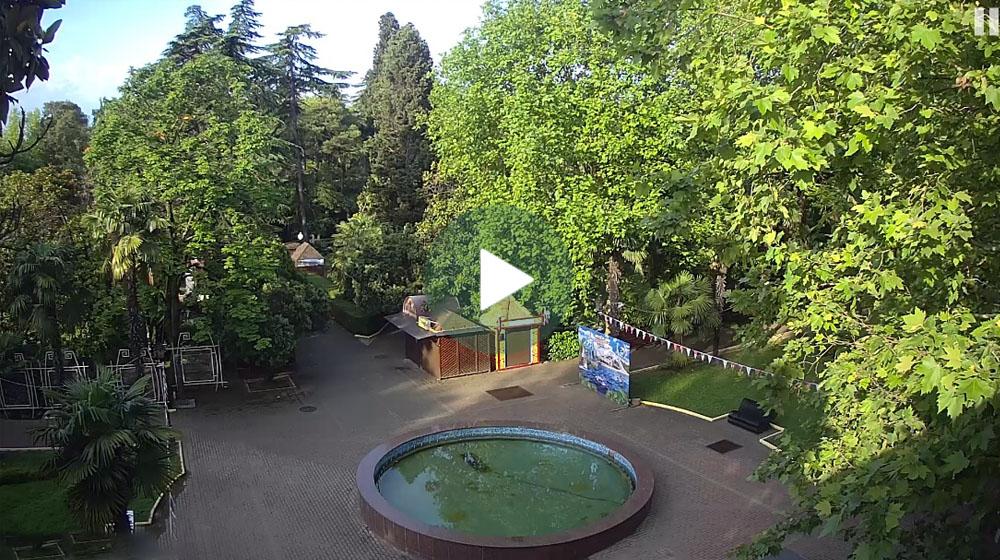 Веб-камера Сочи. Городской парк Ривьера